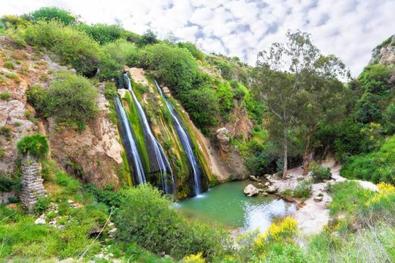 day3-israel_890i594